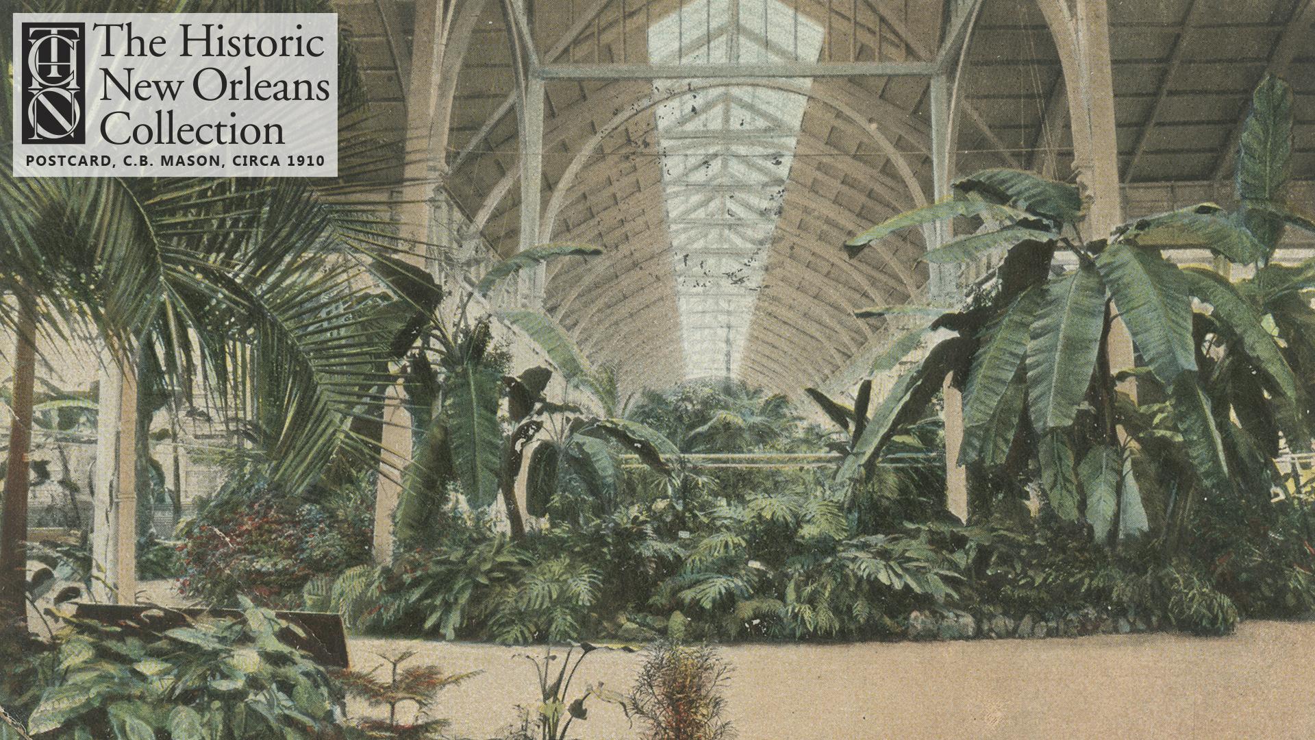 Interior of Horticulture Hall, Audubon Park