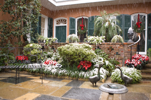 photo of snow on courtyard at THNOC