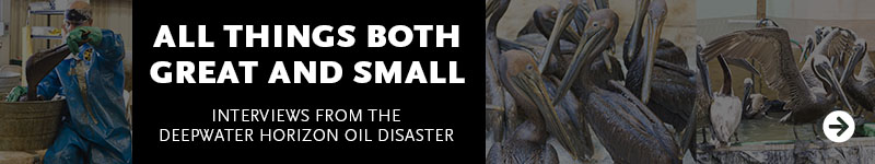 All Things Both Great and Small: Interviews from the Deepwater Horizon Oil Disaster