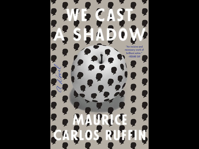 We Cast a Shadow book cover