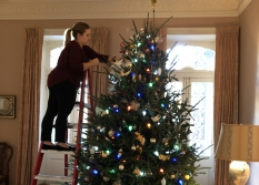 Oh, Christmas Tree! Inside the decoration of THNOC's historic properties